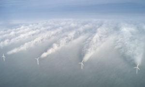 Algorytmy pozwalają turbinowym dzielić między sobą wiatr