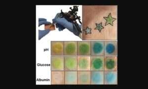 Tatuaże mogą być używane do kontrolowania stanu zdrowia