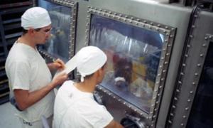 Po co NASA karmiła zwierzęta próbkami księżycowymi?