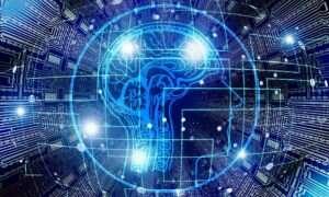 W jaki sposób mózgi zapamiętują decyzje?