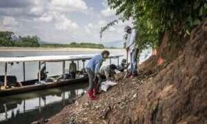 W Amazonii znaleziono pozostałości najmniejszej małpy