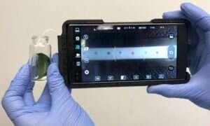 Urządzenie podłączane do smartfona szybko identyfikuje choroby roślin