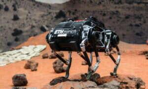 Sprężynowy chód robota SpaceBok jest idealny na planety o niskiej grawitacji