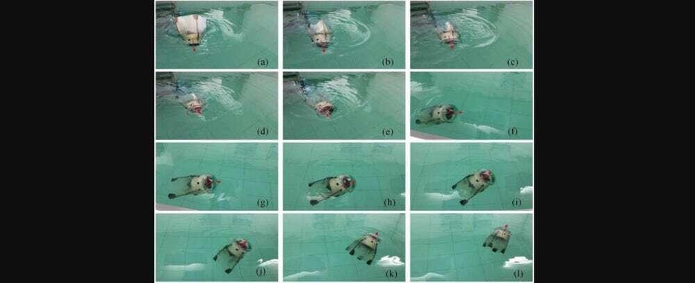 Bezprzewodowy robot-meduza podbił wodną toń
