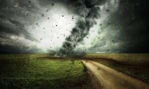 IPCC zwraca uwagę na ziemię w walce ze zmianami klimatu