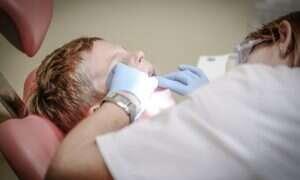 Nowa grupa komórek macierzystych załata ubytki zębów