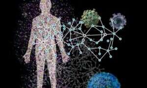 Szczegółowa mapa pokazuje w jaki sposób wirusy atakują ludzi