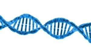 """Pierwotne cząsteczki spontanicznie organizują się w eksperymencie """"zupy"""""""