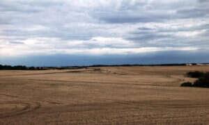 Naukowcy krytykują założenia UE dotyczące ochrony klimatu