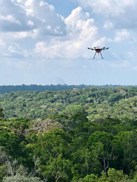 Amazonia, lotne związki organiczne, badanie amazonii, drony amazonia, chemia amazonia, zmiany amazonia
