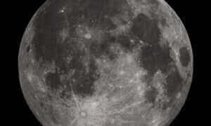 Wkrótce będzie można wysłać swoje DNA na Księżyc