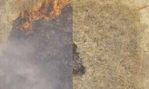 Żelowy płyn pomoże w zapobieganiu pożarom