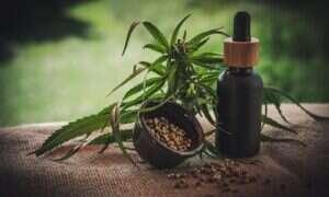 CBD równoważy psychozę wywoływaną przez THC