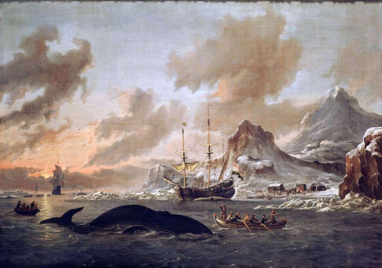 Skąd ogromna popularność wielorybnictwa w XIX wieku?
