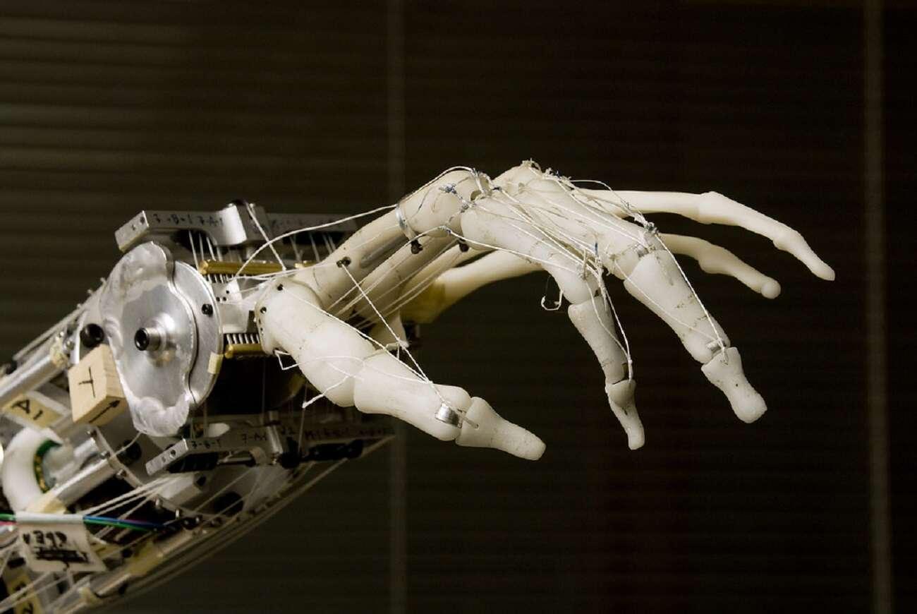 Jak działa i na czym polega sztuczna inteligencja?