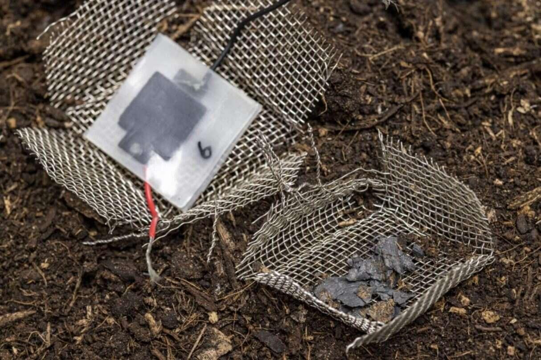 Biodegradowalny minikondensator, wybawienie od elektronicznych śmieci, minikondensator