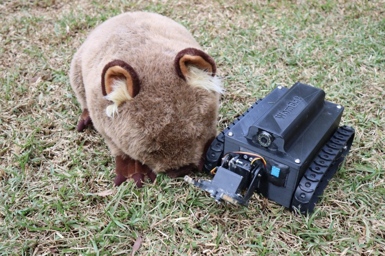 robota WomBot do badania norek wombatów, robot WomBot, WomBot,