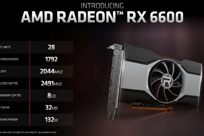 Premiera Radeon RX 6600, Radeon RX 6600